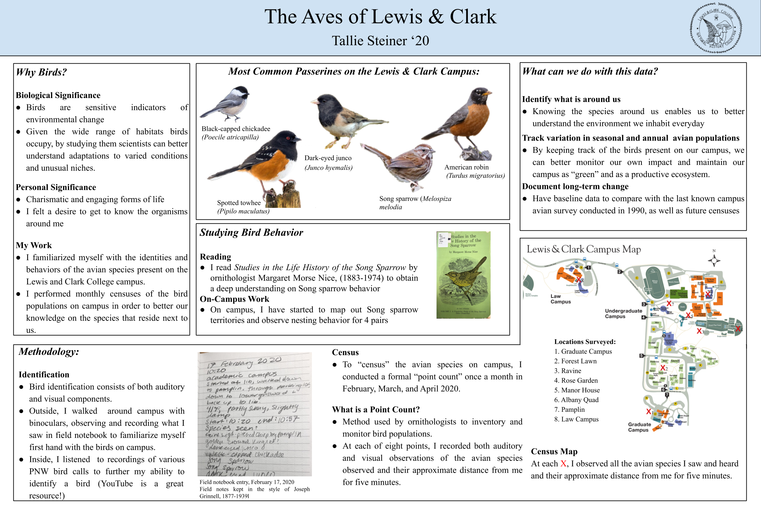 Aves page 1